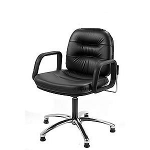 Direct Salon Supplies Palma Reclining Gas Lift Back Wash Chair